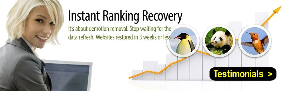 Google Penguin Recovery Service